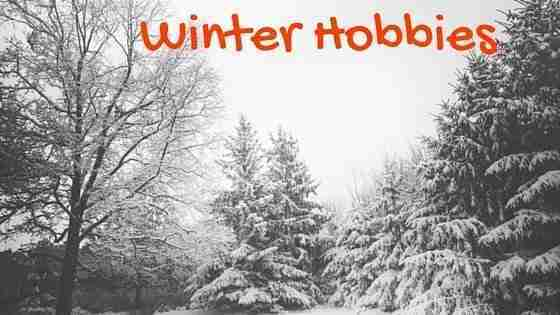 """winter hobbies"" outside snow trees"